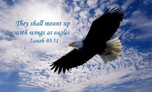 708_nacw_soaring_eagle_with_scripture_1011_Scripture